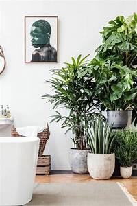 Pflanzen Für Innen : inspirierende dekoideen kleiner innen gartenbereich ~ Michelbontemps.com Haus und Dekorationen