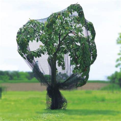 filet protection arbre fruitier filet renforc 233 pour arbres fruitiers 5x12 m vente filet renforc 233 pour arbres fruitiers