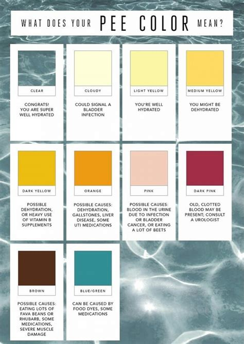 Coloring Urine by Learn What The Color Of Your Urine Means