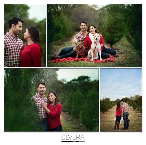christmas tree farms san antonio couples portraits at tree farm olvera photography san antonio photographer