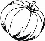 Pumpkin Coloring Pages Blank Fall Printable Template Drawing Outline Pumpkins Patch Benefits Colouring Gourd Clipartmag Getdrawings Radiokotha sketch template