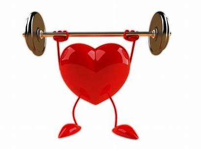 Heart Healthy Transparent Background Broken Health