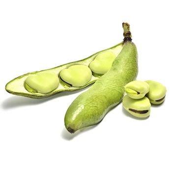 la fève préparer cuire associer cuisiner interfel les fruits et légumes frais