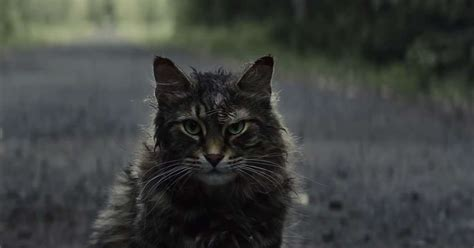 pet sematary trailer  stephen king classic coming