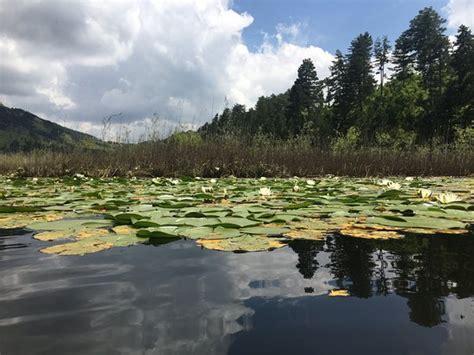 Liqeni i Dushkut (Gramsh) - 2021 All You Need to Know ...