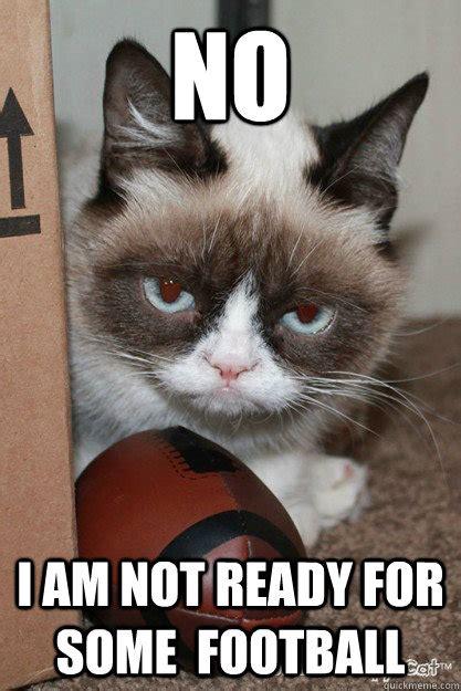 Football Cat Meme - no i am not ready for some football grumpy cat football quickmeme