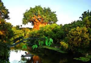 gifs animados de parques tematicos disney gifmania