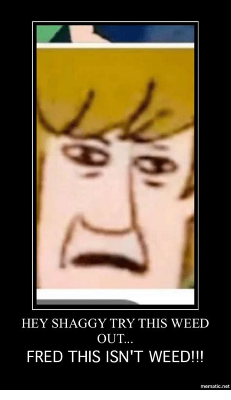 Shaggy This Isn T Weed Memes - hey shaggy try this weed out fred this isn t weed mematicnet weed meme on me me