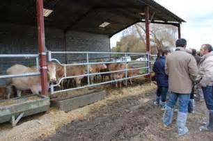 chambre d agriculture des landes engraisser de jeunes bovins bovin viande productions