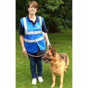 dog walkers and pet sitters near solihull west midlands With dog walking services near me