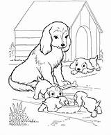 Coloring Dog Printable Colouring Sheets Dogs Puppies Kennel sketch template