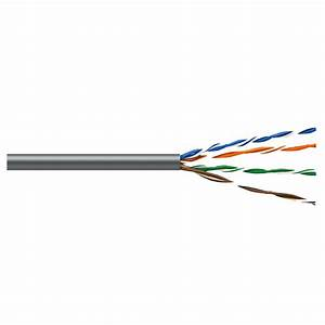 Syston Cable Technology Cat5e 100 Ft  Gray 24