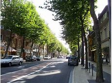 Tree lined street of Calais Picture of Calais, Pasde