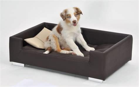 canap lit pour chien canapé pour chien brun beige panier et corbeille