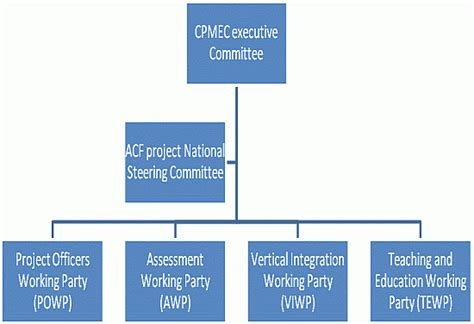 project governance structure template costumepartyrun