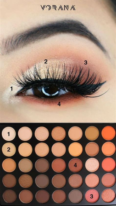 natural eyeshadow tutorial pictures   images