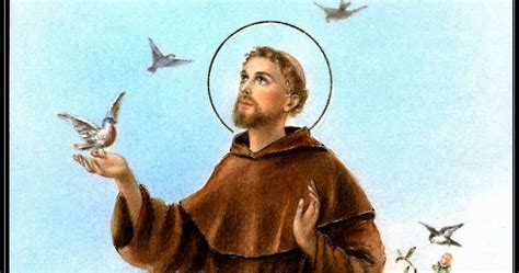 catholic news world october 4 st francis of assisi patron of animals ecology