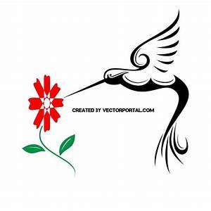 HUMMINGBIRD FREE VECTOR - Download at Vectorportal