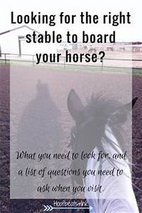 the cost of owning a horse via hoofbeats and ink my With cost to board a horse