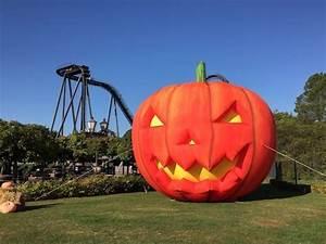 Halloween Im Heide Park : ferientipp f r gruselfreunde halloween im heide park resort freizeitpark erlebnis magazin ~ One.caynefoto.club Haus und Dekorationen