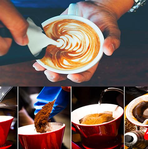 barista training  bounce coffee  full service