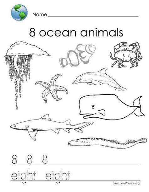 Kindergarde Ocean Activity Worksheets  Miss Stephie's Classroom Mathematics  Kids Stuff