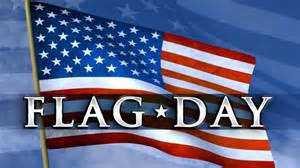 Image result for flag day 2017