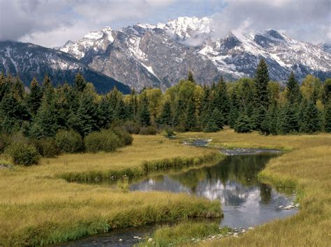 Braineating Amoeba Found In Grand Teton National Park