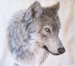 Wolf Head Side View Drawing