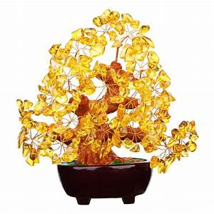 Top 9 Best Feng Shui Money Tree and Luck in 2018