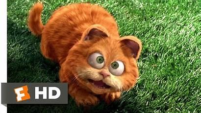 Film Garfield Odie Hewan Peliharaan Garfeld Animasi