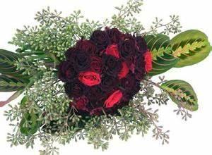 Comment Faire Secher Une Rose : comment faire pousser une rose de magie noire ~ Melissatoandfro.com Idées de Décoration