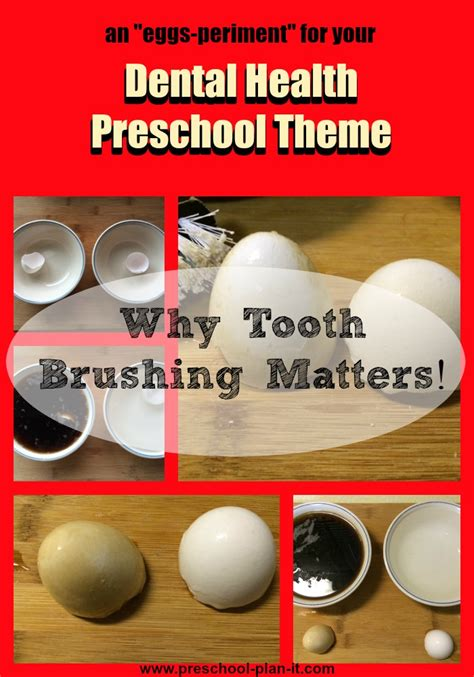 dental health theme  preschool