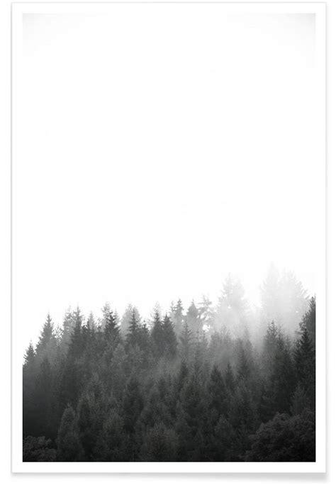 walk   forest premium poster portrait foto