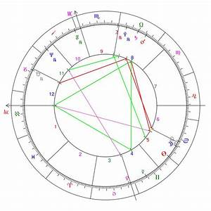 Beginner U2019s Guide  Birth Charts
