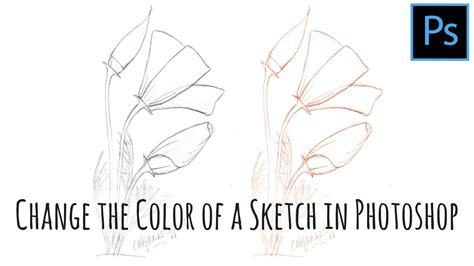 how to color photoshop how to change the color of a line sketch