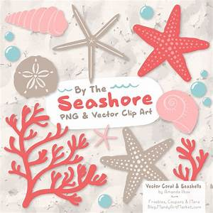 Coral Seashell Clipart