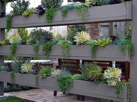 easy care garden ideas 5 easy care mini succulent garden ideas world of succulents