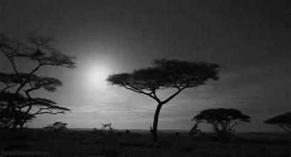 Africa Landscape Giphy Gifs Tweet Bella Dollz