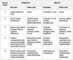 Tanner 39 S Sexual Maturity Rating Scale Pediatric Nursing