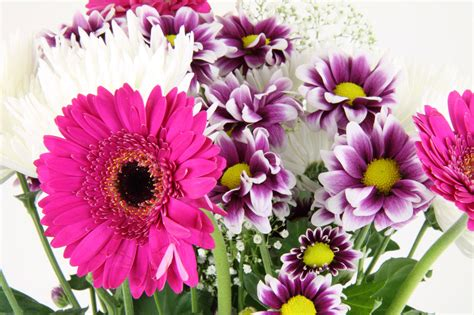 bouquet of flowers flower bouquet free stock photo public domain pictures