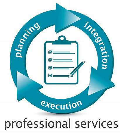 Professional Services Service Itc Business Support System