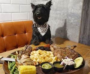 Bocas house drool worthy food in doral hami in miami for Dog house miami