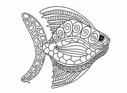 Coloring Animal Pages Adults Fish