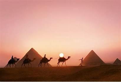 Pyramids Pyramid Desktop Camels Egyptian Pc Wallpapers