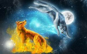 Fire and Ice Wolf Wallpaper (66+ images)