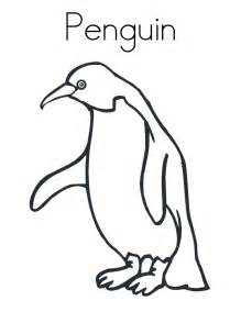 printable penguin pictures cliparts co