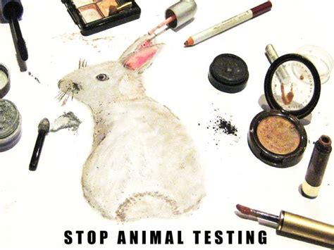 18 best animal testing images on pinterest animal rights