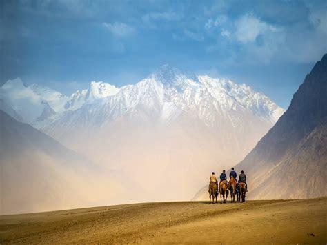 ladakh stay sleep  towering mountains  apricot