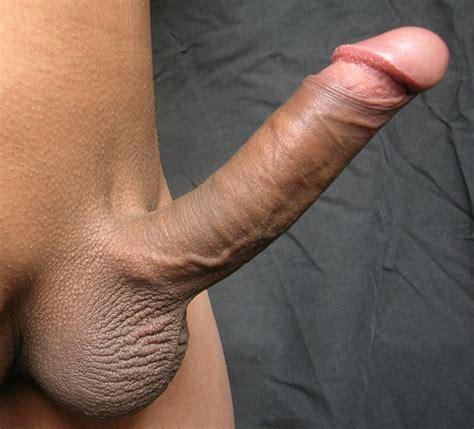 File:Erect penis uncut.jpg - Wikipedia